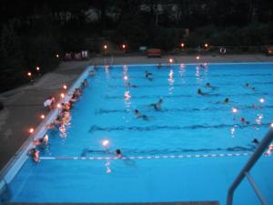 fackelschwimmen 1 20110821 1220864924